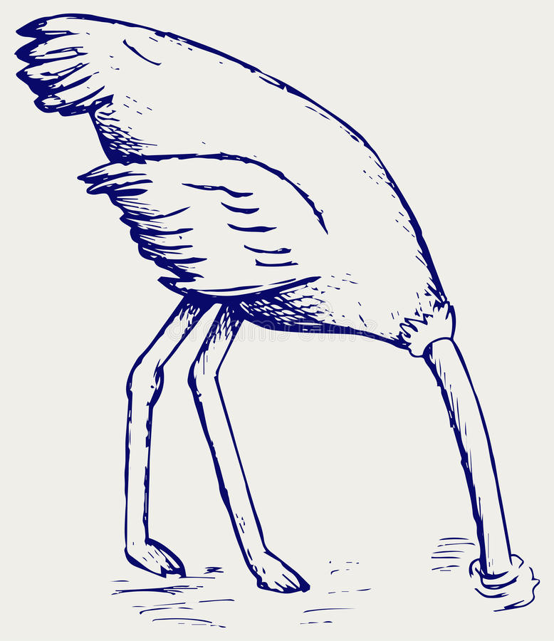 download ostrich burying its head in sand stock vector image 52157370