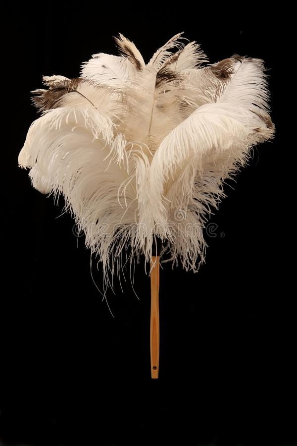 Ostrich Feather Duster. Large feather duster made from natural ostrich feathers royalty free stock photos