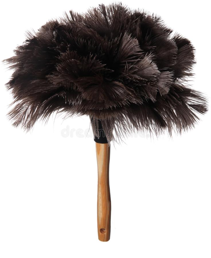 Download Ostrich Feather Duster stock image. Image of housework - 13431859