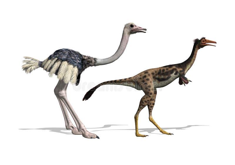 Ostrich and Mononykus Dinosaur Comparision royalty free illustration