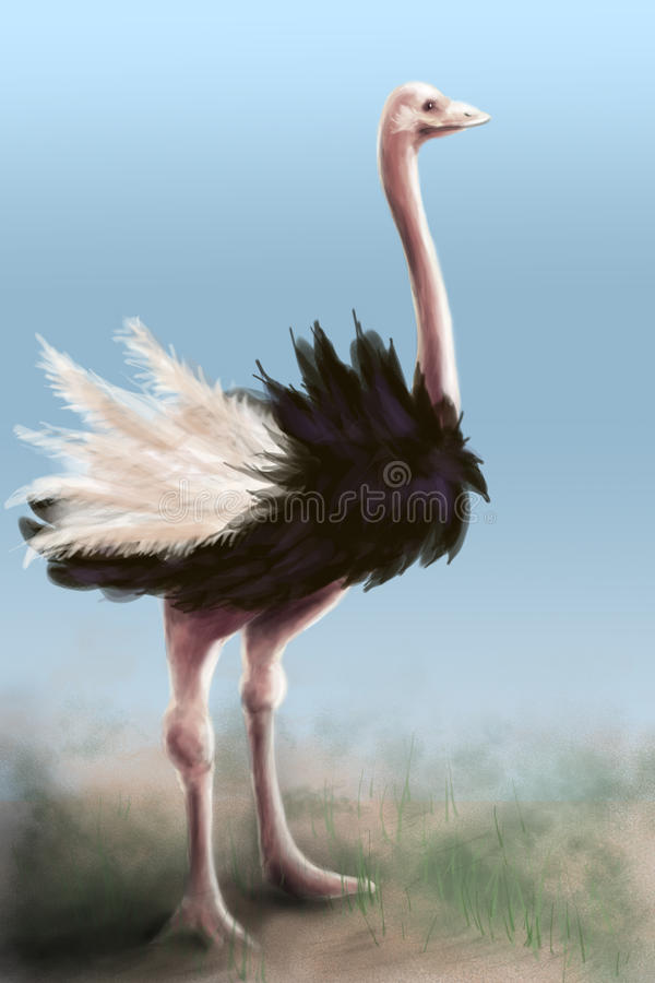 Download Ostrich - Painting Stock Images - Image: 18494654