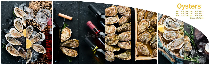 Ostriche del collage e vino e spuntini immagini stock libere da diritti