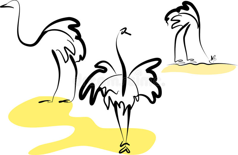 ostriches royaltyfri illustrationer