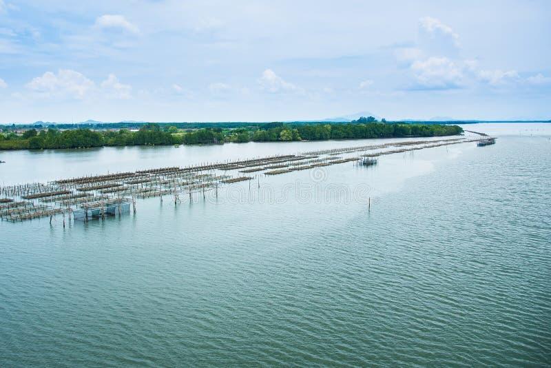 Ostronlantgård i havet på dagtid thailand royaltyfri bild