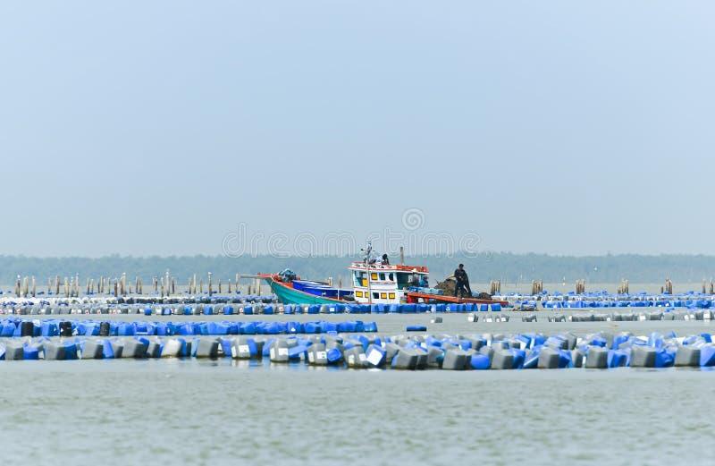 Ostronlantgård och ostronfartyg i havet av Thailand royaltyfri fotografi