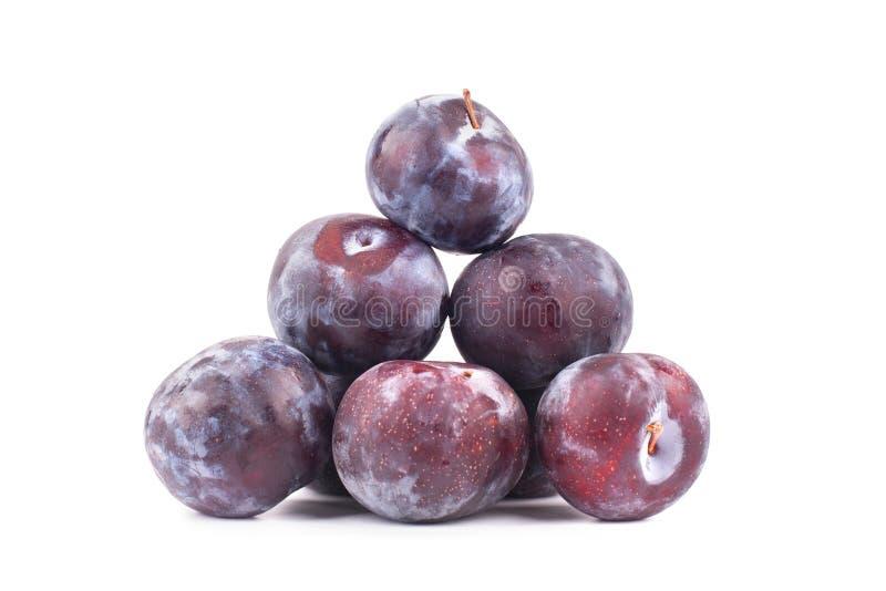 Ostrosłupa stos purpurowe dojrzałe śliwki na biały tło odizolowywającym zakończeniu w górę makro- obraz stock