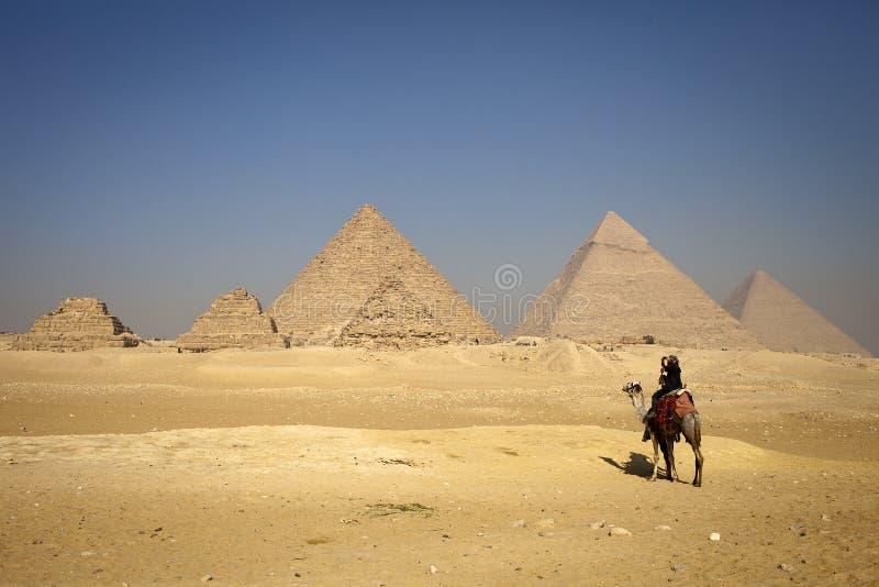 ostrosłupów samotni wielbłądzi osamotneni ludzie zdjęcie stock