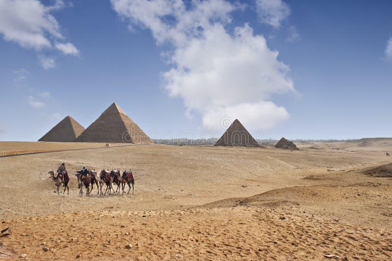 Ostrosłupy Giza zdjęcia stock
