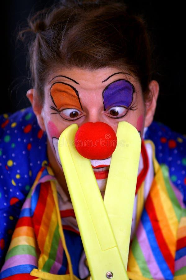 ostry klaun fotografia royalty free