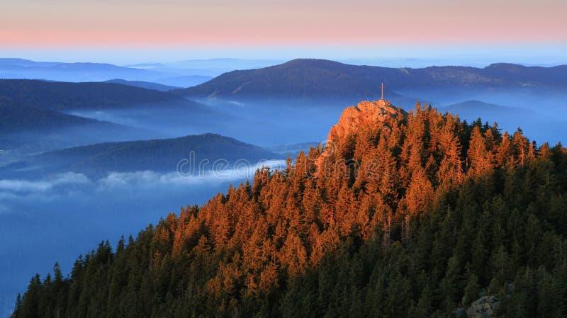 Ostry superior en el parque nacional Sumava - República Checa foto de archivo