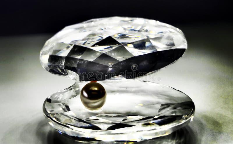Ostryga, perła, diamentowe krystaliczne biżuterii kobiety miłość, szkło, obraz stock