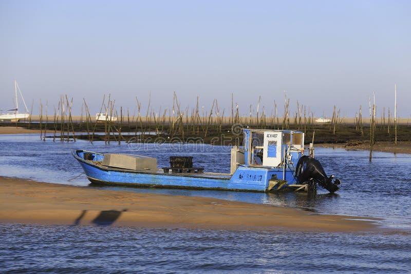 Ostrygowa łódź obrazy royalty free