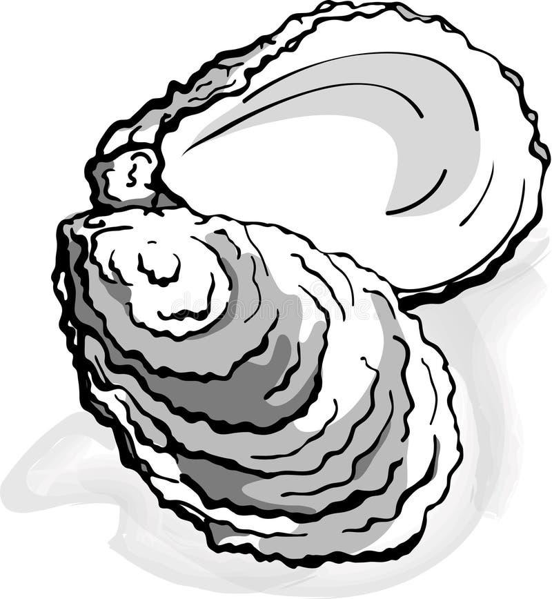 Ostrygowy owoce morza skorupy milczek - ilustracja ilustracji