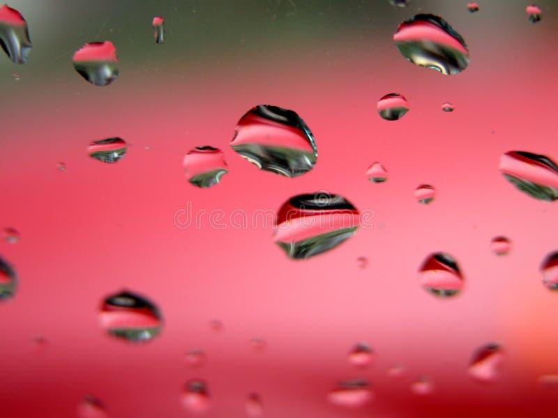ostrza makro krople wody zdjęcie stock