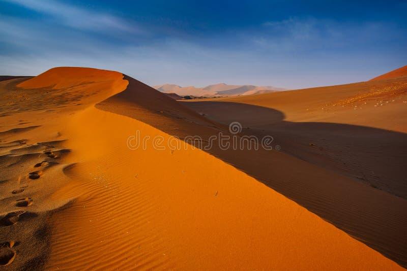 Ostrze granica ?wiat?o i cie? nad grzebieniem diuna Namib-Naukluft przy zmierzchem Namibia, Po?udniowa Afryka Poj?cie e obraz royalty free