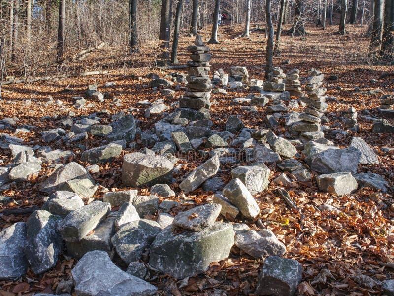 Ostrze kamienie brogujący w spadku lesie Jesień ranek zdjęcie stock