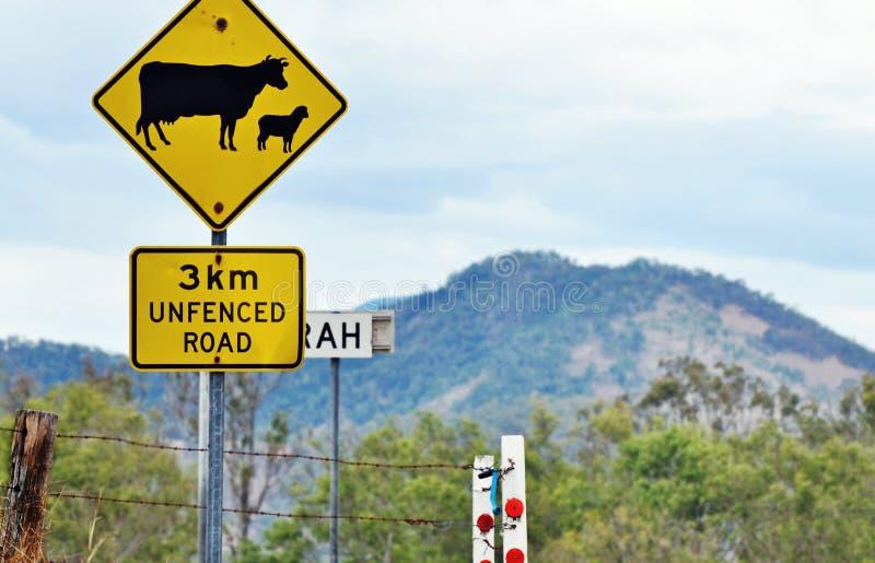 Ostrzegawczego drogowego znaka bydła barani skrzyżowanie w wiejskiej wsi fotografia stock