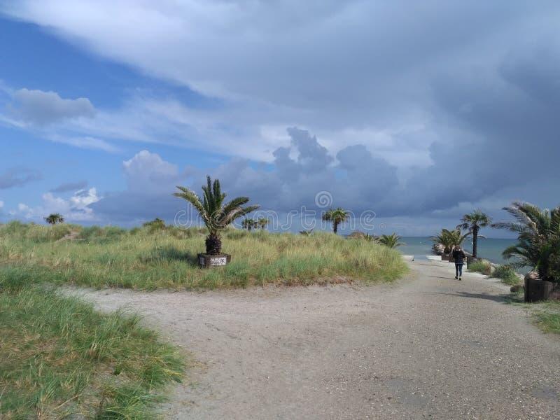 Ostsee bei Skagen stockfoto