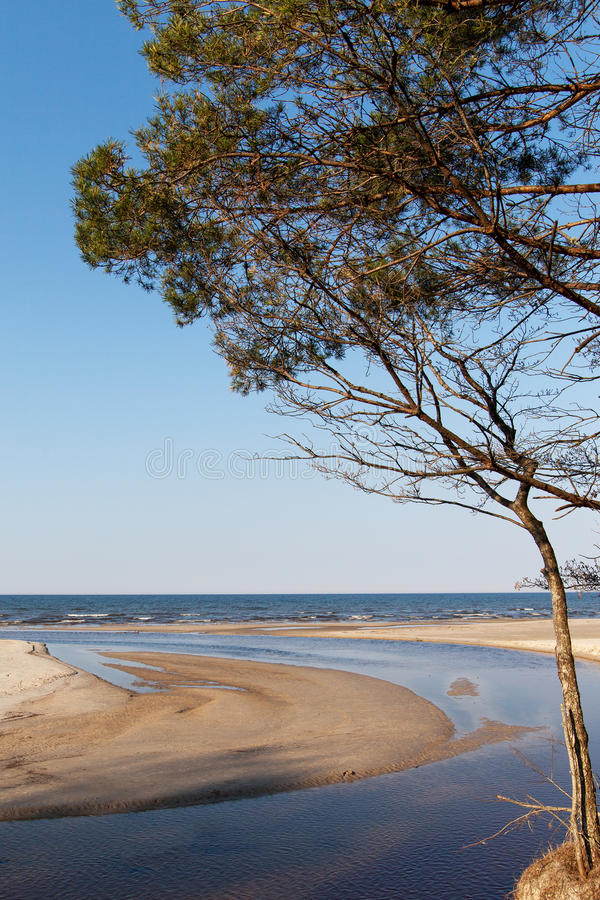 Ostseeküste stockfoto