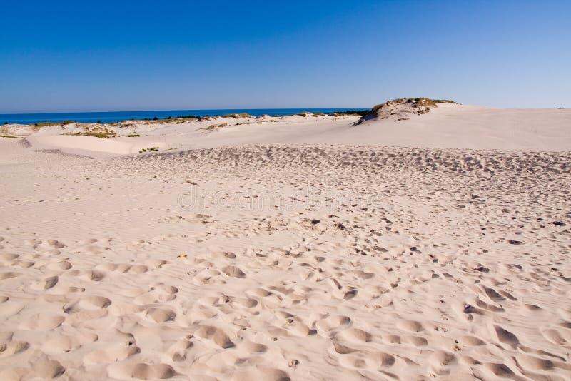 Ostseeküstenlinie Stockbilder