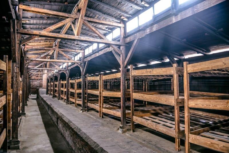 Oswiecim/Polen - 02 15 2018: Hölzerne Betten innerhalb der Gefangener ` s Kaserne in Museum Auschwitz Birkenau stockbild