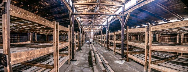 Oswiecim, Polska/- 02 15 2018: Drewniani łóżka wśrodku więźnia ` s koszary w Auschwitz Birkenau muzeum zdjęcia royalty free