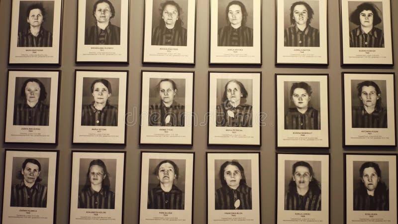OSWIENCIM POLSKA, STYCZEŃ, -, 14, 2017 portretów Auschwitz Birkenau ofiary Niemiecka Nazistowska koncentracja i obrazy royalty free