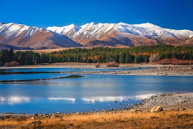 Oszałamiająco krajobraz Jeziorny Tekapo zdjęcia stock
