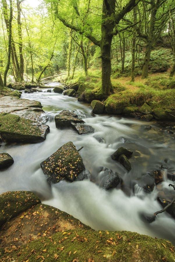 Oszałamiająco krajobrazowy iamge rzeczny spływanie przez bujny zieleni dla zdjęcia stock