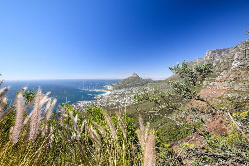 Oszałamiająco panorama widok przedmieście obozów zatoka i lwa ` s Przewodzi górę i Zgłasza zdjęcie royalty free