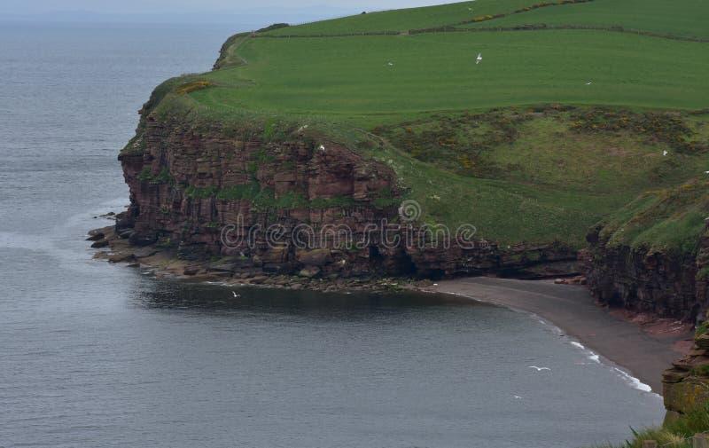 Oszałamiająco Sea Cliff Otacza Fleswick zatoki w Zachodnim Cumbria obraz stock