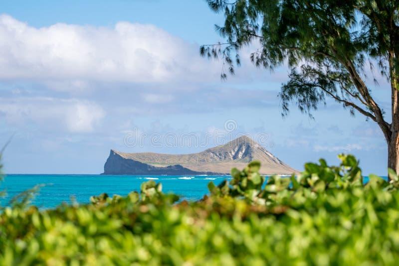 Oszałamiająco widok MÄ  Nana wyspy królika wyspa, mała bezludna wysepka z wybrzeża Wschodni Oahu, Hawaje, usa, widzieć od Waima fotografia royalty free