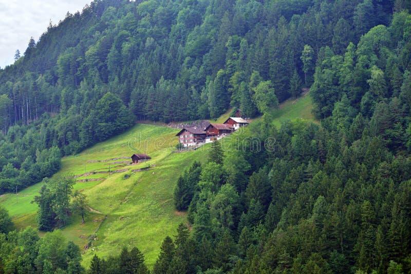 Oszałamiająco wysokogórski krajobraz w kantonie Uri, Szwajcaria fotografia royalty free