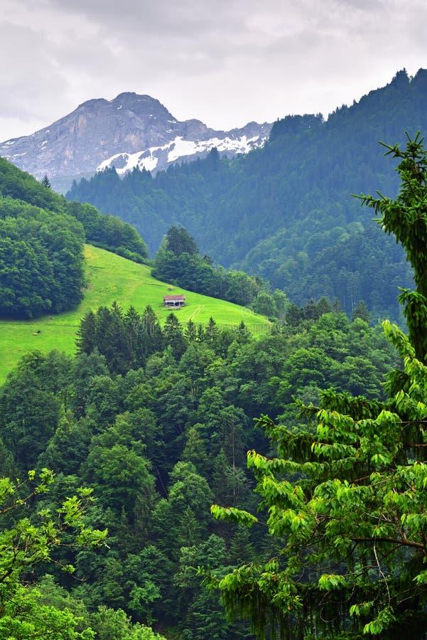 Oszałamiająco wysokogórski krajobraz w kantonie Uri, Szwajcaria obrazy stock