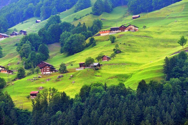 Oszałamiająco wysokogórski krajobraz w kantonie Uri, Szwajcaria obrazy royalty free