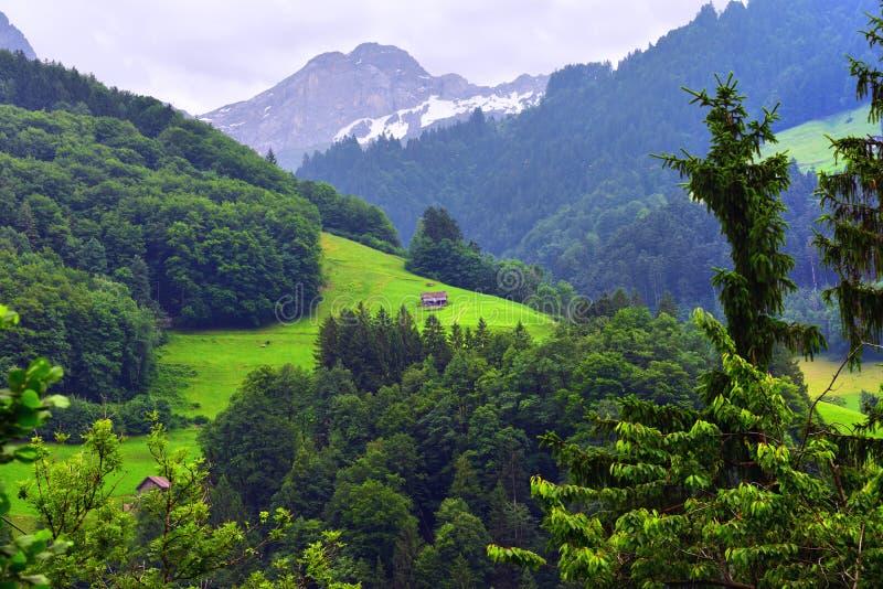 Oszałamiająco wysokogórski krajobraz w kantonie Uri, Szwajcaria zdjęcie stock