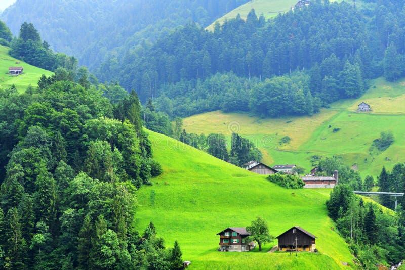 Oszałamiająco wysokogórski krajobraz w kantonie Uri, Szwajcaria zdjęcie royalty free