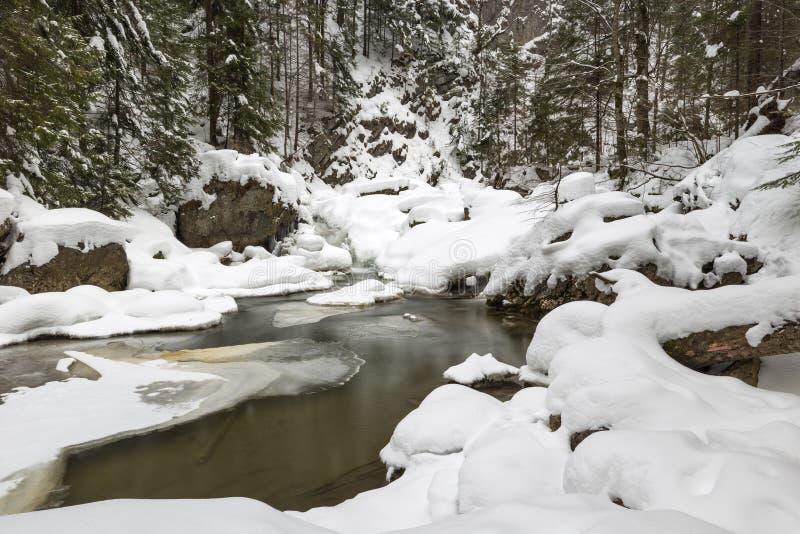 Oszałamiająco zima krajobraz, kamienie na mroźnej rzece zakrywał śnieg a zdjęcie stock
