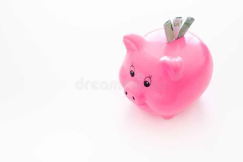 oszczędzania Moneybox w kształcie świnia z banknotami spada w je na białej tło przestrzeni dla teksta obraz stock