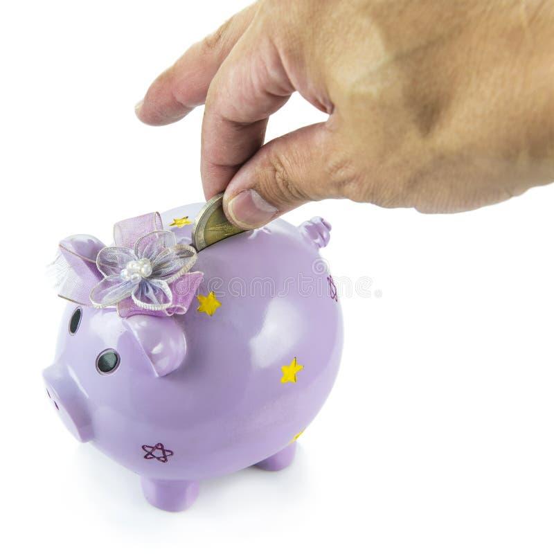 Oszczędzanie, męska ręka stawia pieniądze w prosiątko banka odizolowywającego na białym tle obraz royalty free