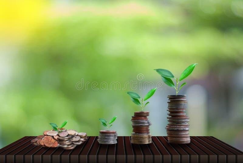 Oszczędzanie pieniądze dla narastającego biznesu i przyszłości pojęcia zdjęcia stock