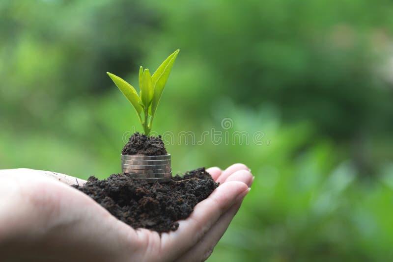Oszczędzanie pieniądze pojęcie z ręki mienia pieniądze monety planem i stertą zdjęcia royalty free