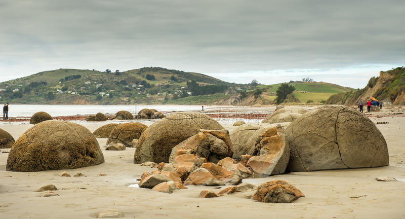 Otago fotografie stock libere da diritti