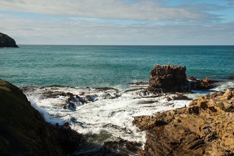 Otago fotografia stock