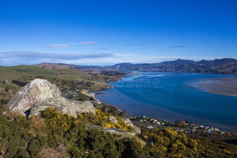 Otago-Hafen in Neuseeland lizenzfreies stockbild