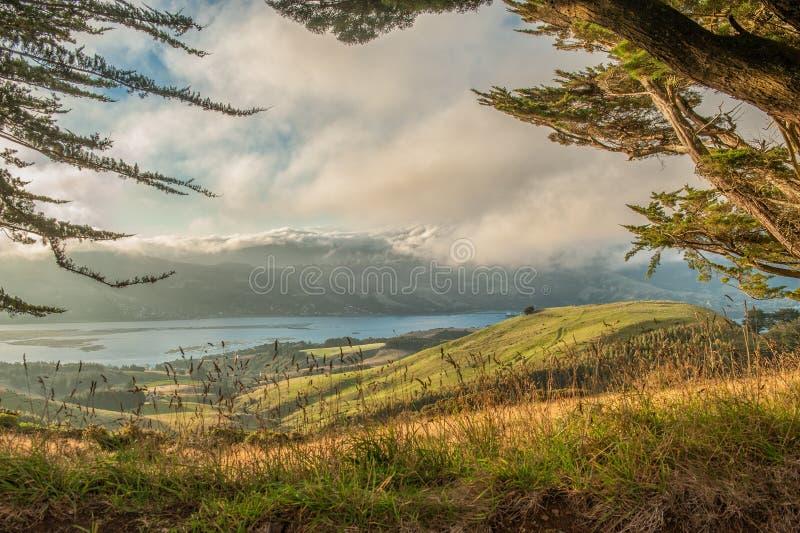 Otago halvö, södra ö, Nya Zeeland arkivbild