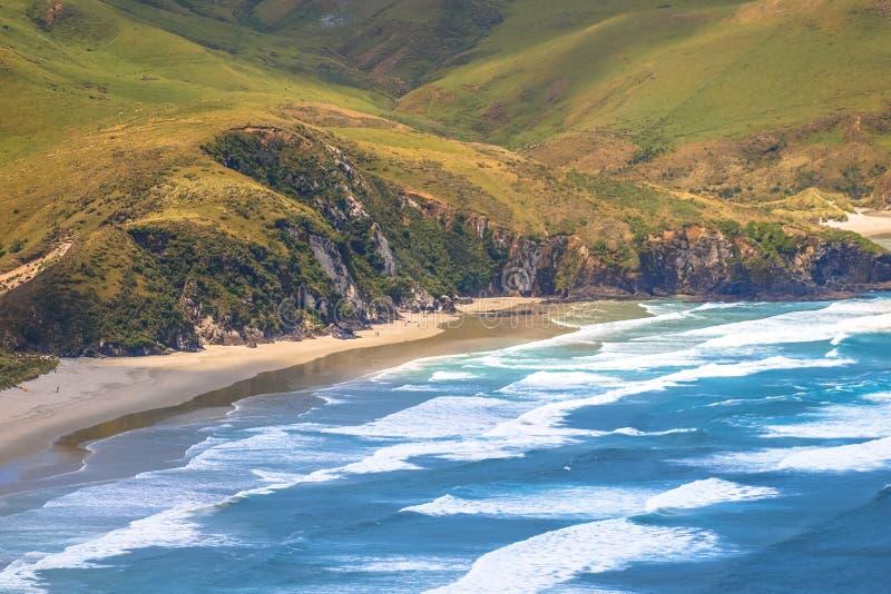 Otago halvökust fotografering för bildbyråer