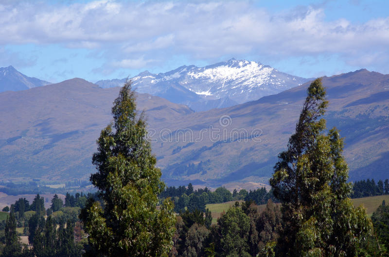 Otago - Nova Zelândia imagem de stock
