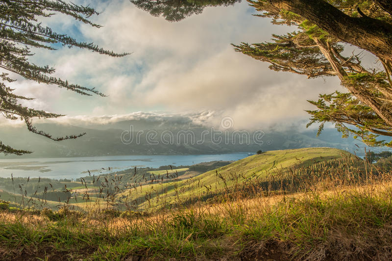 Otago Peninsula, South Island, New Zealand. Pastures of Otago Peninsula, South Island, New Zealand stock photography