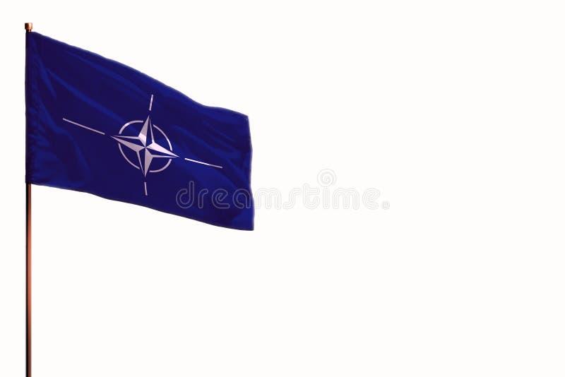 A OTAN de vibração isolou a bandeira no fundo branco, modelo com o espaço para seu índice fotografia de stock